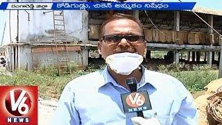 Bird Flu   People are in tensed with detection of virus - Ranga Reddy (16-04-2015)