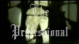 DMX - Vampire Hunter D - The Professional