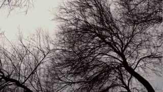 Sonbahar Günü Yalnız ölüm Teması
