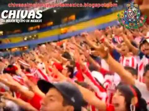 """""""Se que  nunca vas a ser campeon"""" Barra: La Irreverente • Club: Chivas Guadalajara"""