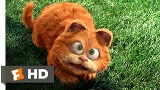 Garfield (25) Movie CLIP   Odie Saves Garfield (2004) HD