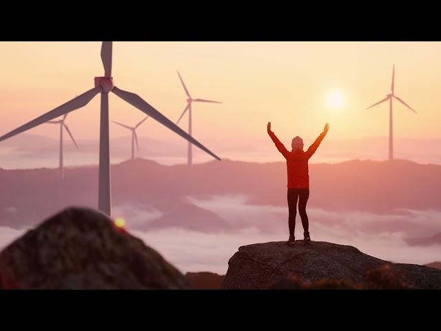 Las principales cifras eólicas en 2021