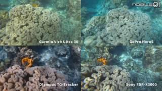 [4K Action Camera] GoPro Hero5/Sony X3000/Garmin Virb Ultra/Olympus TG-Tracker UNDERWATER 5m