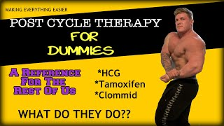 Post Cycle Therapy For Dummies ( HCG, Nolvadex and Clomid Explained)