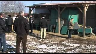 Výroba agro pelet - konference ProPelety, 22.2.2011, Žďár nad Sázavou