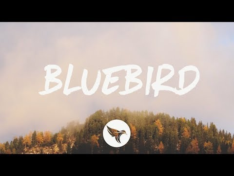 Miranda Lambert - Bluebird (Lyrics)