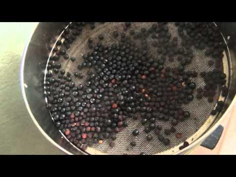 Сушка ягод, сушка черемухи, сушка грибов.