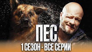 Сериал ПЕС - ПОЛНЫЙ 1 сезон - ВСЕ СЕРИИ ПОДРЯД (1 - 20) | Сериалы ICTV