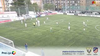 R.F.F.M. - Jornada 12 - Preferente Alevín (Grupo 2): C.D. Canillas 1-3 C.D.E. Academia de fútbol Alcobendas