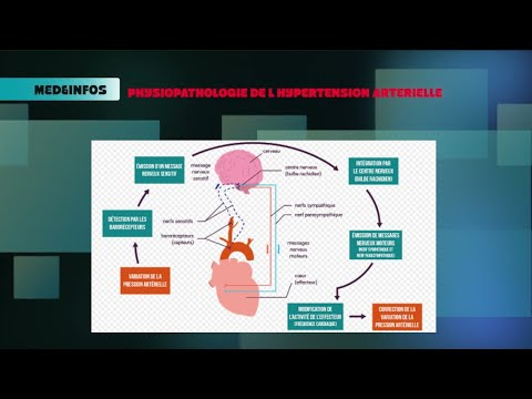Que pour le diagnostic de lhypertension 2 c. risque 2