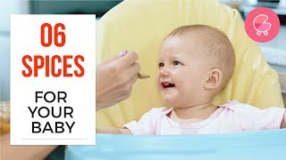 Which spices to introduce to babies and when | Babygogo