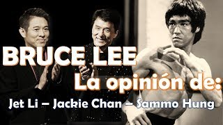 Bruce Lee - Que opinan Jackie Chan, Jet Li, Sammo Hung