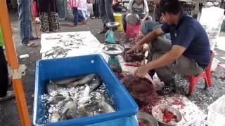 preview picture of video 'Ikan Air Tawar Di Pekan Sehari Temerloh, Pahang'