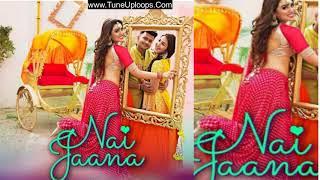 Nai Jaana Tulsi Kumar Sachet Tandon Tanishk Bagchi Free Download