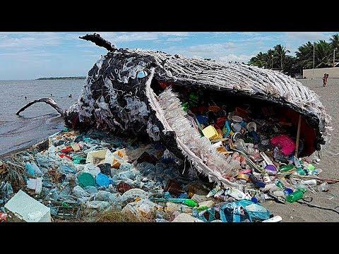 Самые Поражающие Свалки в Мире - Вот к Чему Приводит Загрязнение Окружающей Среды