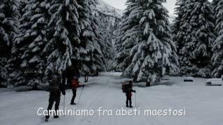 preview picture of video 'Ciaspolata in Val Paghera. Roccolo Pornina, 28 Dicembre 2010.'