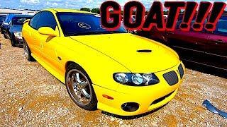 Copart Walkaround + Carnage 8-14-18 GTO!!!
