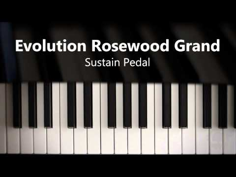 Video for Evolution Rosewood Grand - Sustain Pedal