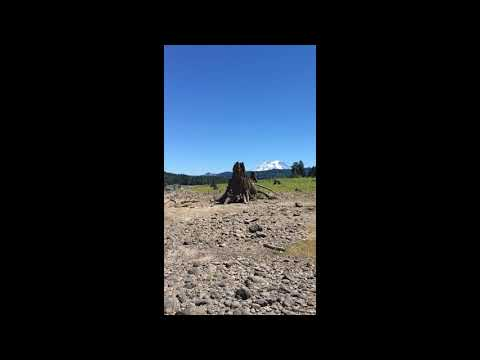 Video Of Alder Lake Campground, WA