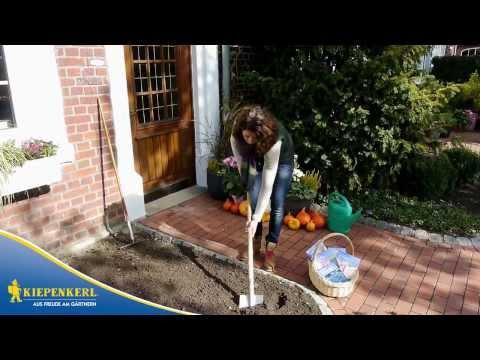 Kiepenkerl - So pflanzen Sie Blumenzwiebeln mit dem Pflanzkorb