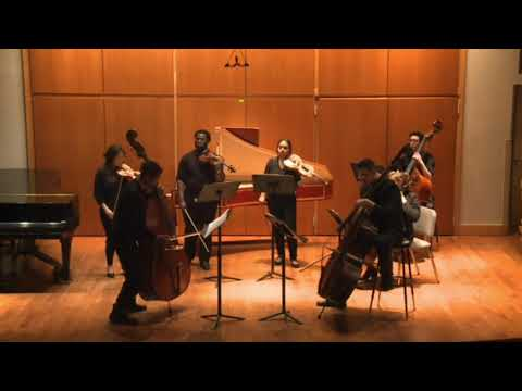 Vivaldi Concerto In A minor for two BIG BASSES??????
