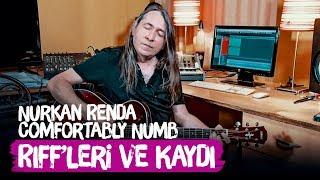 Pink Floyd - Comfortably Numb | Akor ve Riff İncelemesi ve Akustik Gitar Kaydı | Nurkan Renda