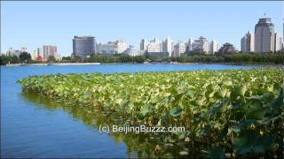 Video : China : LianHuaChi 莲花池 Park, BeiJing, slideshow