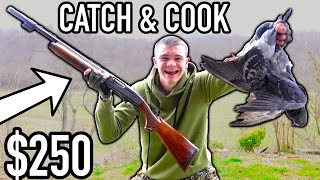 CHEAPEST SHOTGUN I COULD FIND! (Catch Clean Cook)