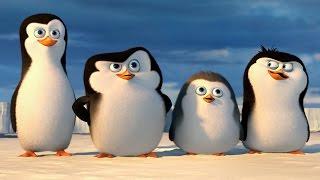 "ПИНГВИНЫ МАДАГАСКАРА - ""Пингвины Антарктики"" - РОССИЯ"