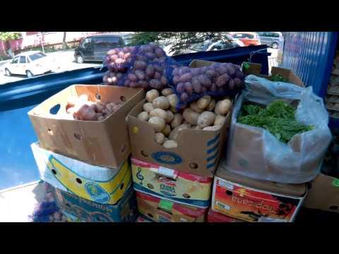 судак цены на продукты в августе