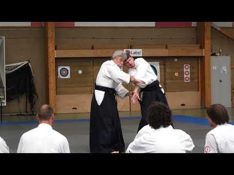 Aikido Stage Luc sur Mer 2019 Demo 2 Shio Nage
