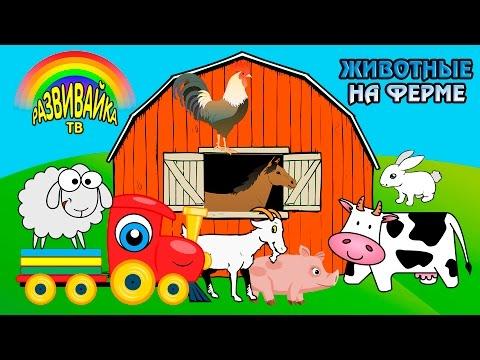 Мультики для самых маленьких. Какие животные живут на ферме? Домашние и дикие животные.