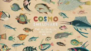 Cosmo Sheldrake - Birthday Suit (Audio)