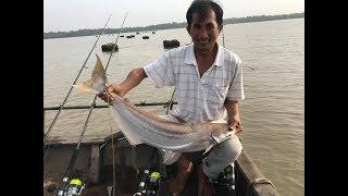 CAO THỦ ĐI CÂU CÁ BÔNG LAU GẶP GHE CÀU ĐIỆN VÀ CÁI KẾT   BIGS FISHing