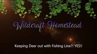 "INVISIBLE Deer fencing Using Fishing Line! Plus, NEW Way to Make a ""Gate""."