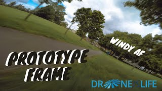 Testing a prototype in the wind // fpv freestyle