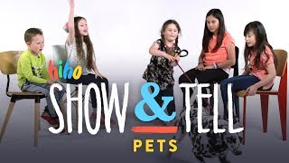 Pets | Show and Tell | HiHo Kids