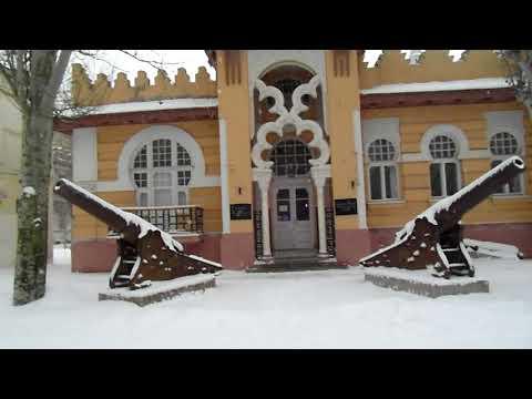 Что происходит с лебедями в Крыму. Голод не тётка...лебеди и чайки едят с рук.