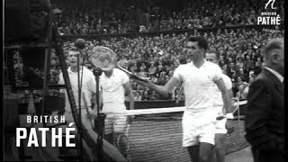 Sports News - Wimbledon Finals (1954)