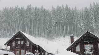Blizzard Storm Sounds   Relaxing Winter Background Sounds   Heavy Wind & Snow