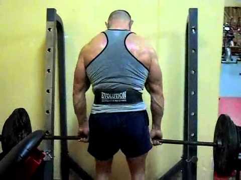 Mięśnie pleców górę