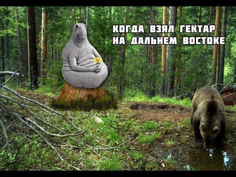 Россиянам раздают землю / Как оформить гектар на Дальнем Востоке ?