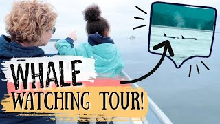 AMAZING WHALE WATCHING TOUR! VICTORIA BC CANADA TRAVEL VLOG