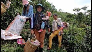 Lôi Chè xuống núi - Hương vị đồng quê - Bến Tre - Miền Tây