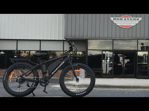 2020 SSR Motorsports Sand Viper 500W in Greenville, North Carolina - Video 1