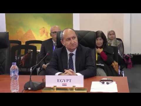 الوزير/عمرو نصار خلال الجلسة الختامية للمؤتمر السابع لوزراء التجارة الافارقة