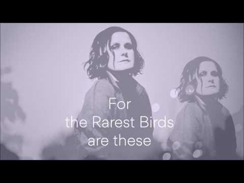 The Rarest Birds lyrics