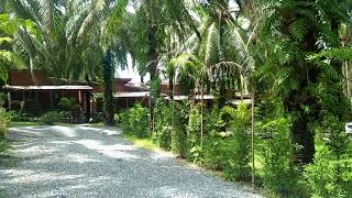 Excellent Business Opportunity - 22 Bungalow Rental Property in Popular Ao Nang, Krabi