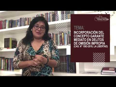 CONCEPTO GARANTE MEDIATO EN DELITOS DE OMISIÓN IMPROPIA - Luces Cámara Derecho 166