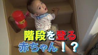 階段を登る赤ちゃん!?